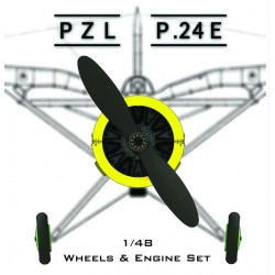 1/48 PZL 24 E Conversion For MIRAGE HOBBY Plastic Kit